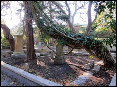 Burying Ground 049