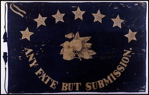 Saint_Augustine_Blues_3rd_FLA_Inf_CoB_Flag