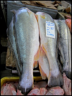 BB Fish Market Panama 028