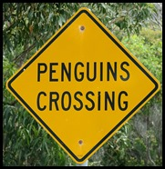 A Penguins Crossing