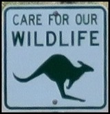 A Care for Wildlife