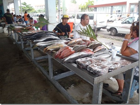 Tour Fish Market 291